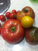 OK, so they might not look perfect but there's nothing tastier than tomatoes that actually ripen on the vine!